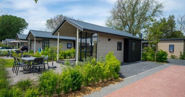 Chalet Lodge 4 - Nederland - Noord-Holland - 4 personen afbeelding