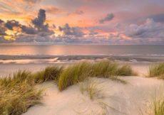 strand nederlandse kust - zeeland