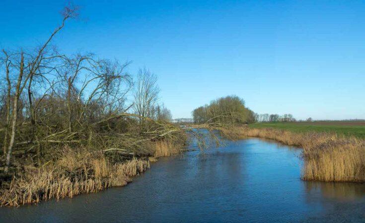 varen in de Biesbosch